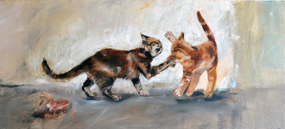 riña de gatos II parte -1000