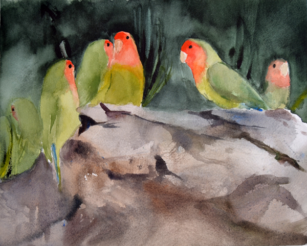 Lovebirds II -p