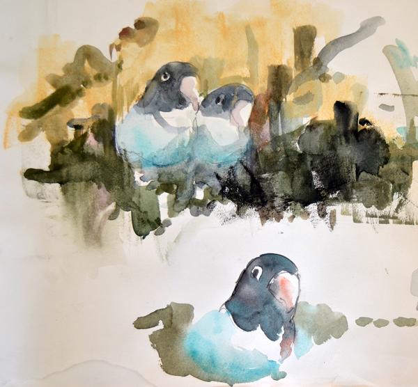 Lovebirds sketch 1 - p
