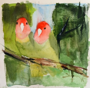 Lovebirds studio n2 -p
